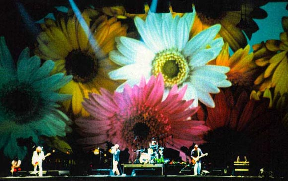 REM-Live-1995-Frauenfeld-Out-In-The-Green-02.jpg